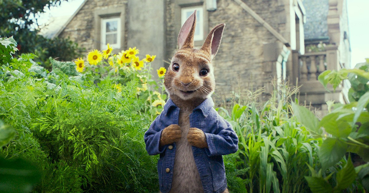改編自暢銷八千萬本童書,全世界最紅的兔子《彼得兔》跳上大螢幕!