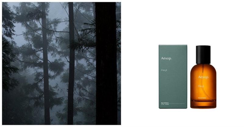 又一款文青香報到!來自森林的土質香味香水,妳一定要知道!