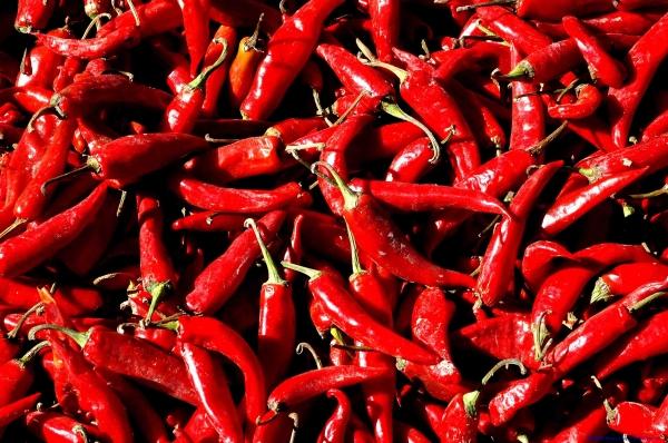 辣的食物對腸胃不好。