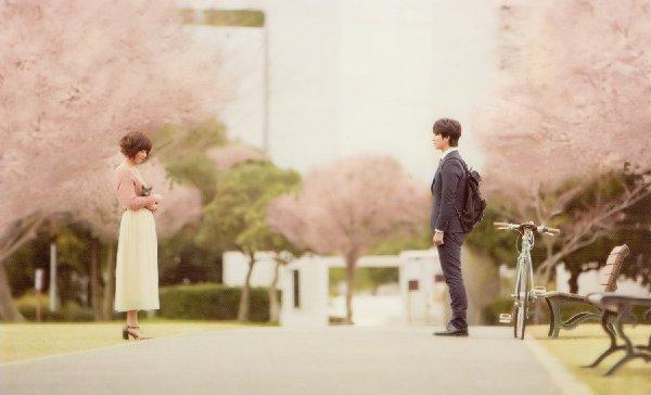 日本的純愛電影,都覆蓋著一層淡淡的憂傷。