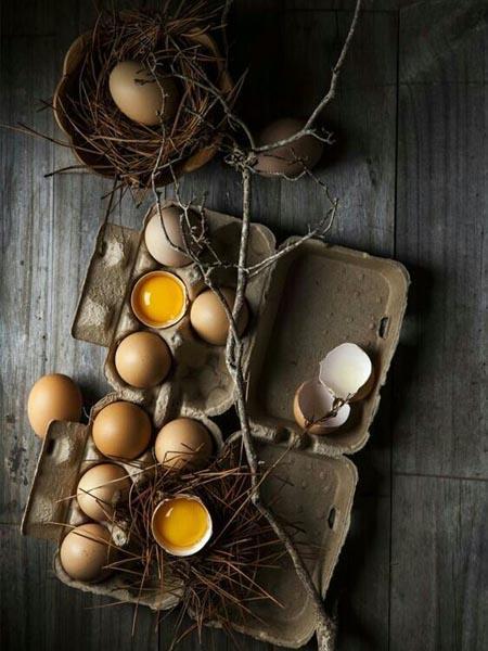 食物飲食蛋