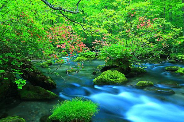 跟著林依晨踩點去!7個可以讓妳放空的日本東北景點,小心待著就不想走了!